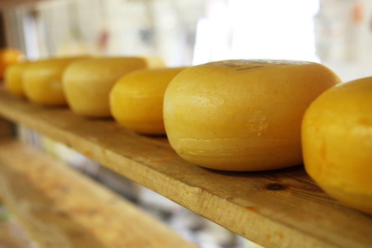naxian cheese