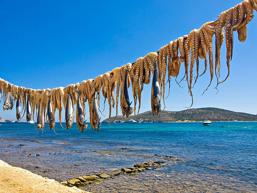 Octopus and Fish drying in the sun on Antiparos Island in the cyclades- car free islands of greece blog